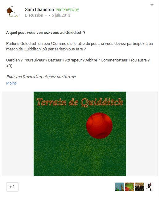 A quel poste vous verriez-vous au Quidditch ? Quid110