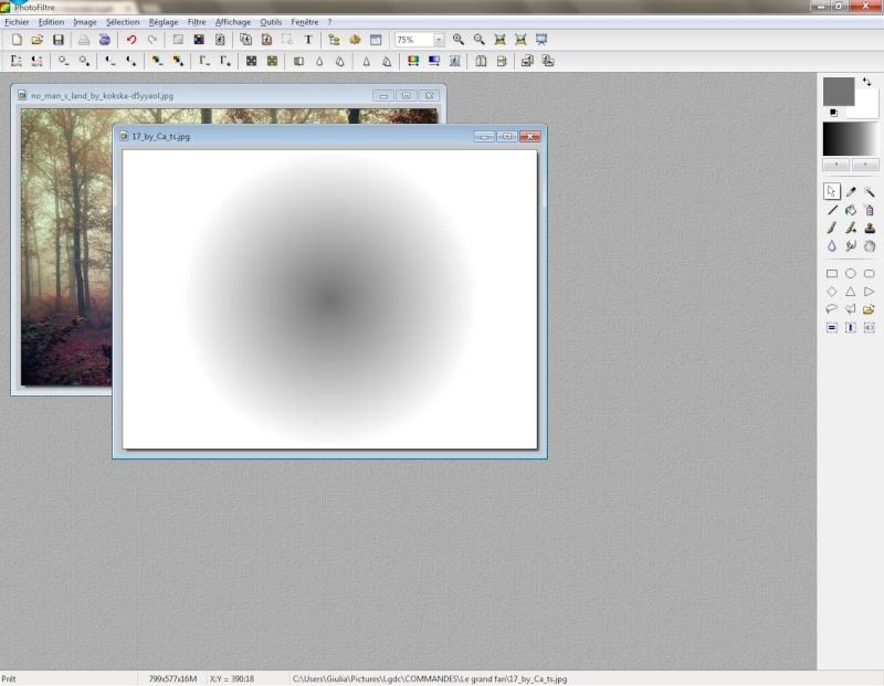 Fondu radial en collage spécial. 211
