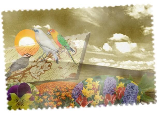 les ptites créas de lilie - Page 2 Collin15