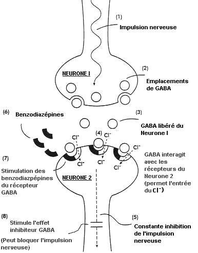 Diagramme benzodiazépines - Neptune