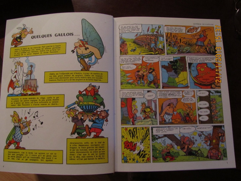 LE GRENIER D ARTRIX - Page 4 Img_1416