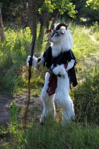 Jeux de chèvre... Julboc10