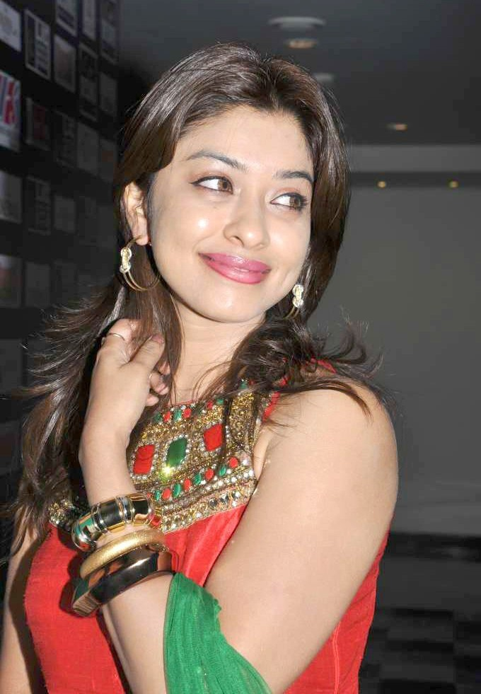 Payal Ghosh Amazing in Red & Green Photo Gallery Payal-12