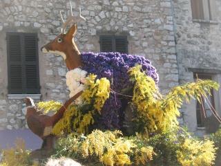 Alpes maritimes (06) Tourrettes-sur-Loup Carnaval des violettes 34710