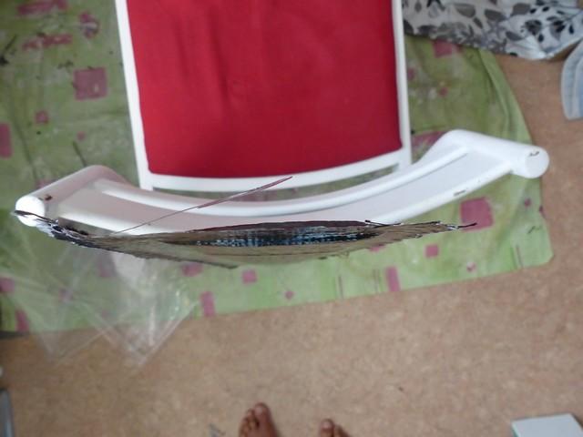 Dups foil V3 P1070421