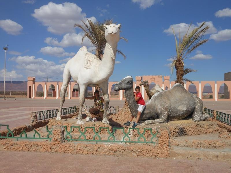 retour Maroc octobre 2013 - Page 2 Dscn0116