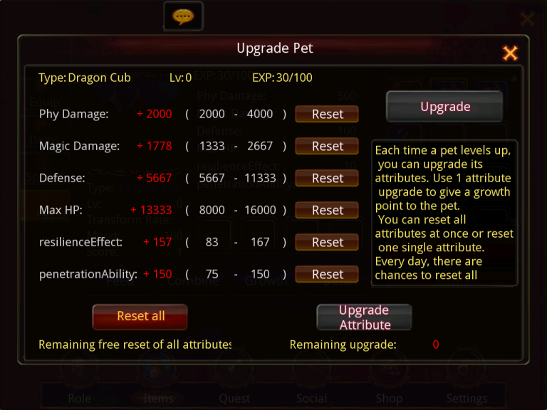 Pets Dragon10