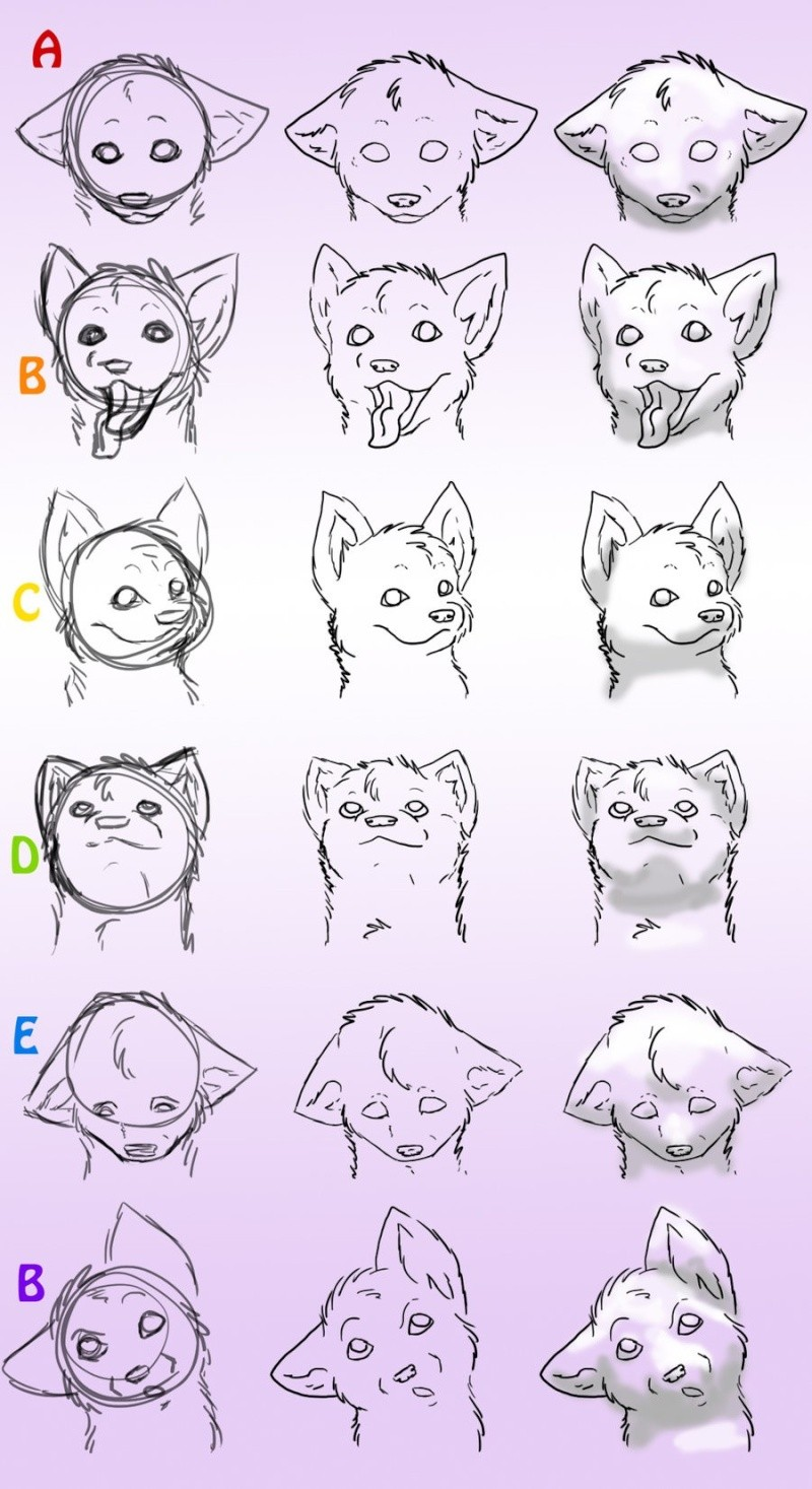 [Aide] dessiner un chiot/chien Chien_11