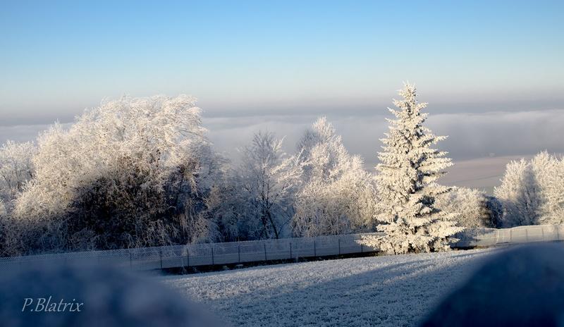 Givre et brouillard Imgp3811