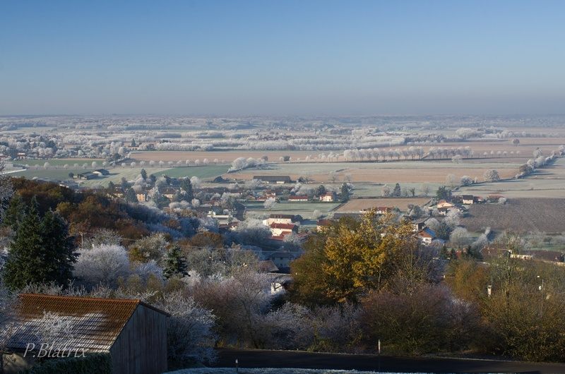 Givre et brouillard Imgp3813