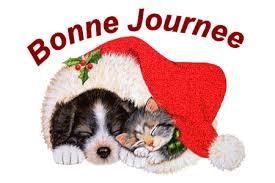 """""""Bonjour / Bonsoir"""" !!! - Page 39 Images10"""