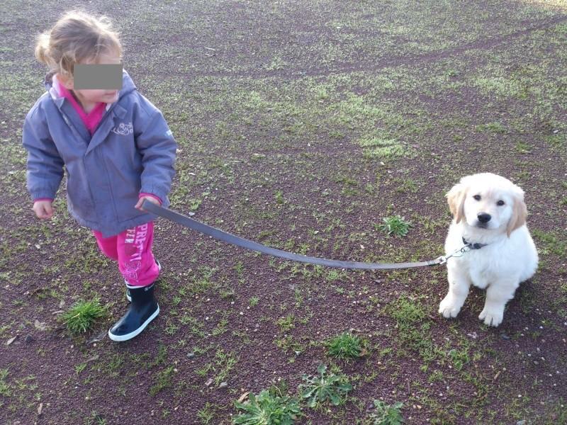 Des enfants et des chiens... - Page 2 2013-129