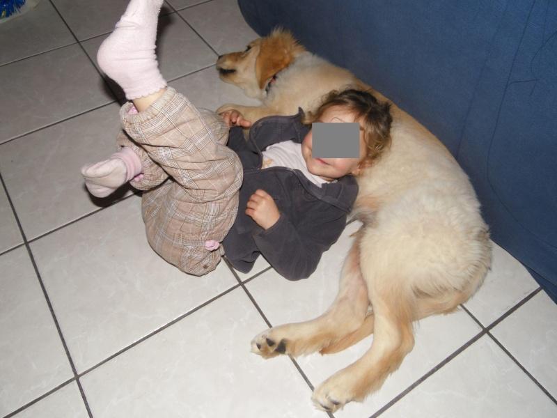 Des enfants et des chiens... - Page 2 2014-091