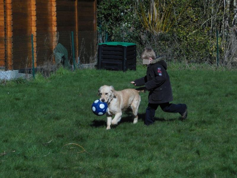 Des enfants et des chiens... - Page 2 2014-094