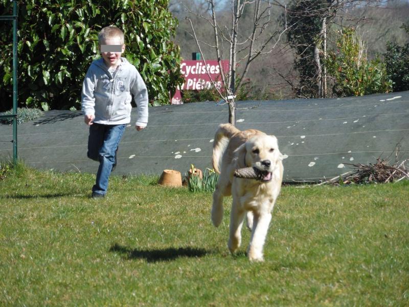 Des enfants et des chiens... - Page 2 2014-095