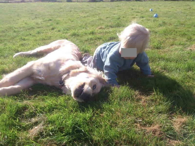 Des enfants et des chiens... - Page 2 2014-096