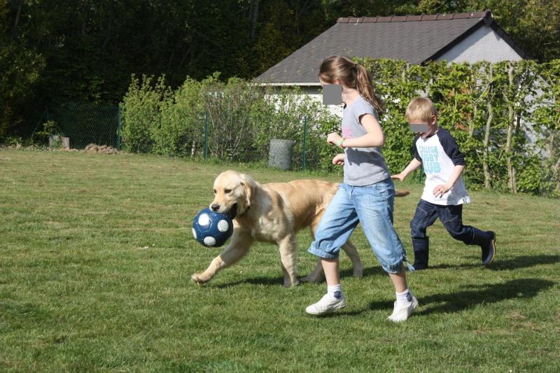Des enfants et des chiens... - Page 2 Img_1210