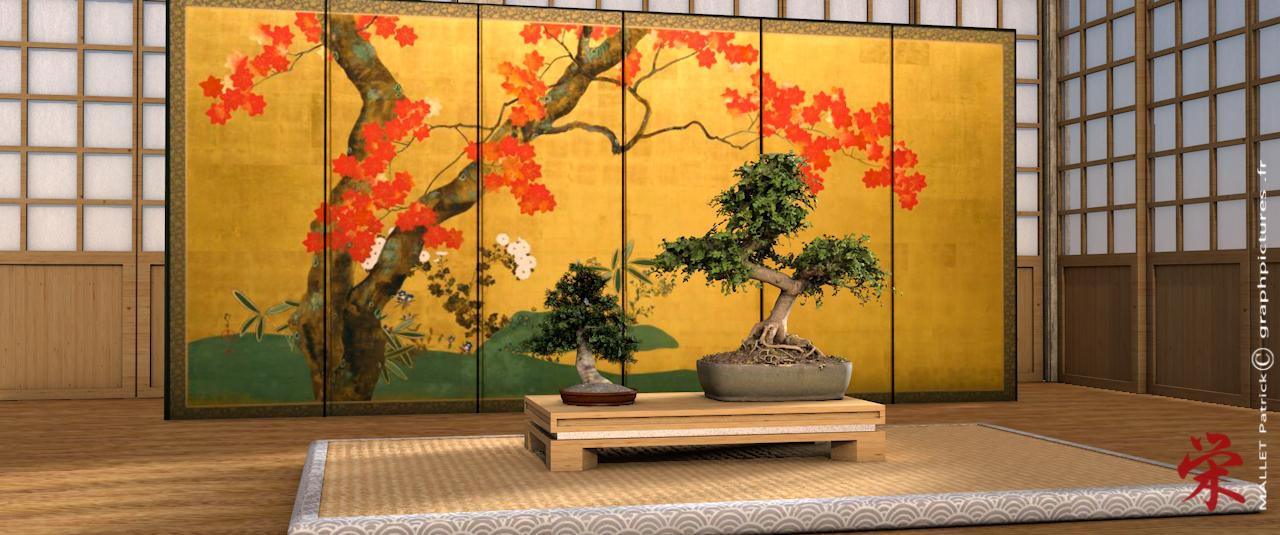 ma vision du  japon - Page 2 Bonsai10