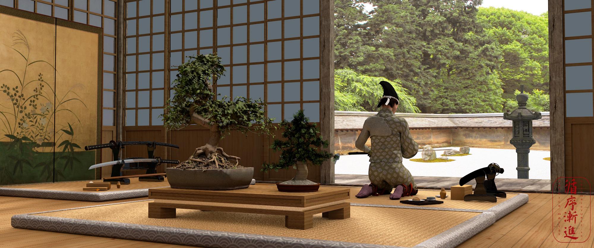 ma vision du  japon - Page 2 Bonsai13