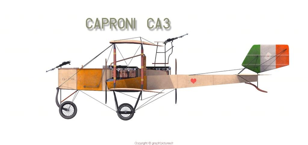 Caproni CA3 Capron10