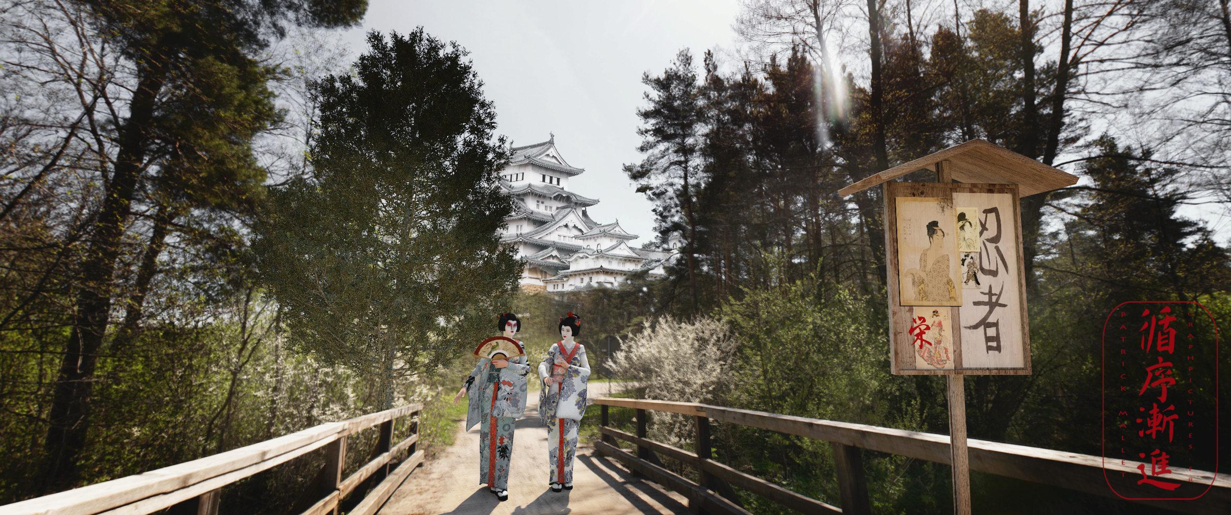 ma vision du  japon - Page 3 Geisha10