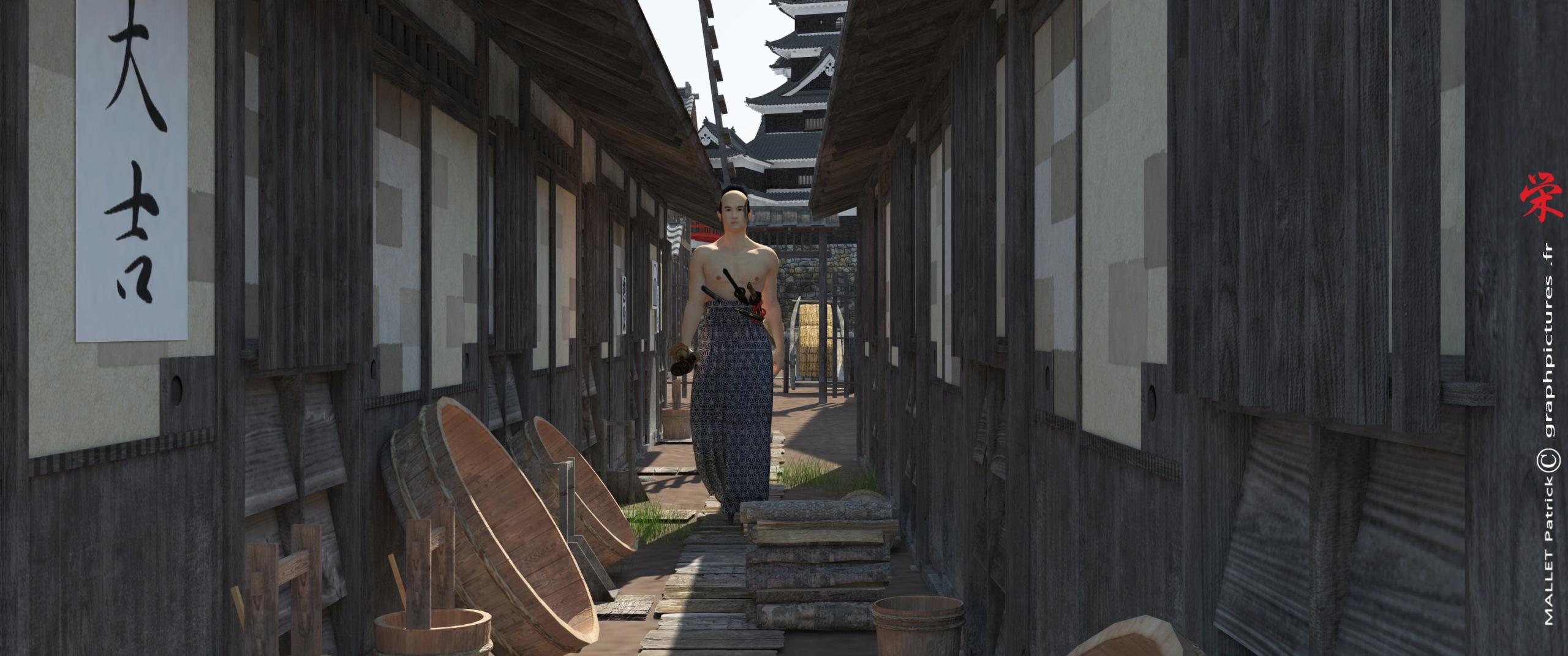 ma vision du  japon Villag13