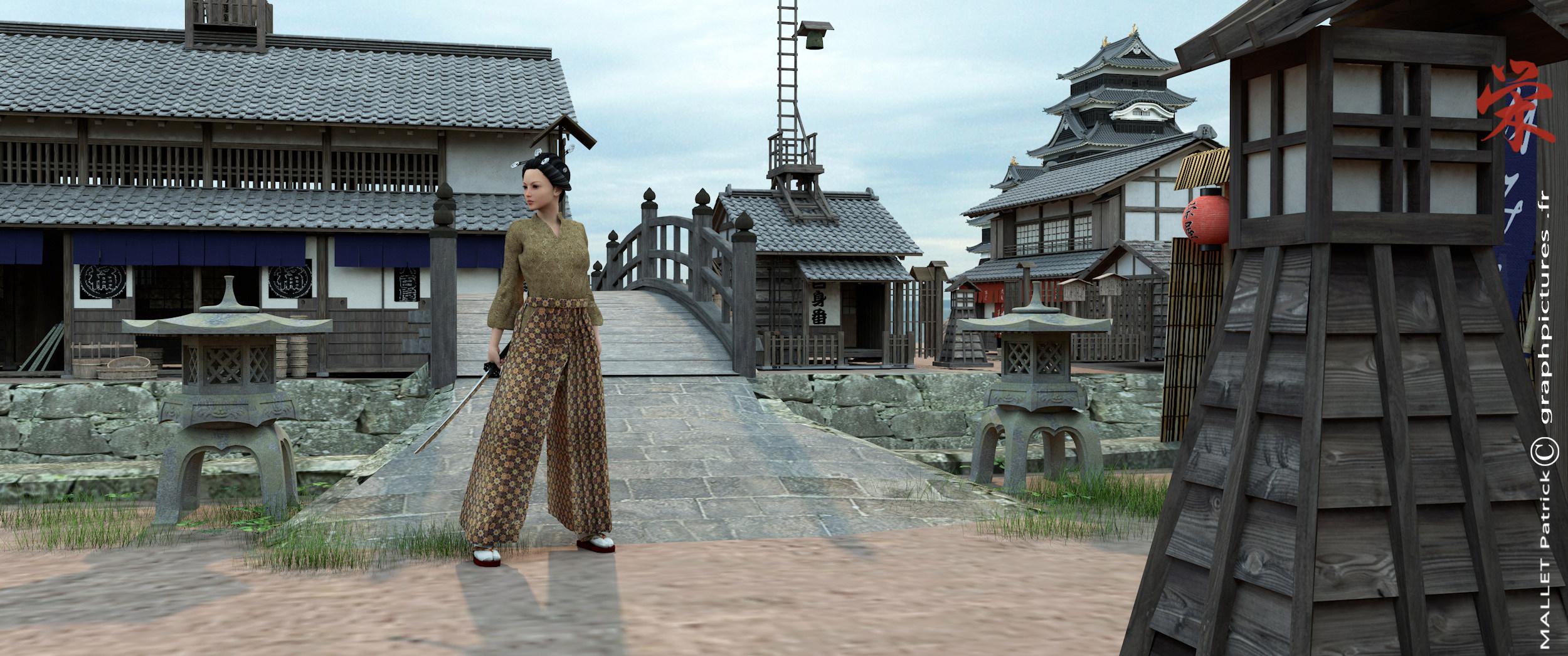 ma vision du  japon - Page 2 Villag15