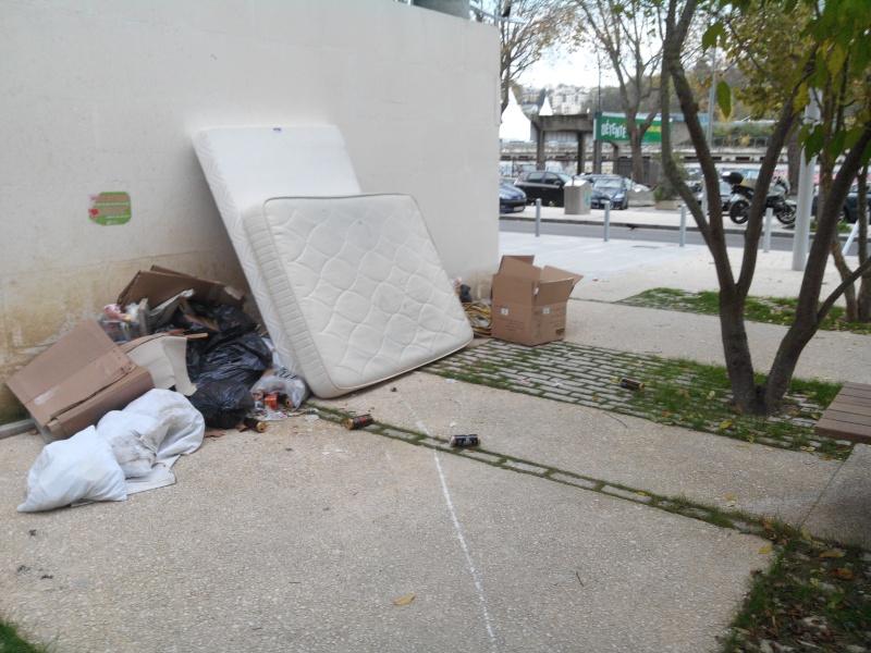 Encombrants, poubelles et caddies - Page 4 Img_2011