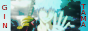 Gintama Bouton10