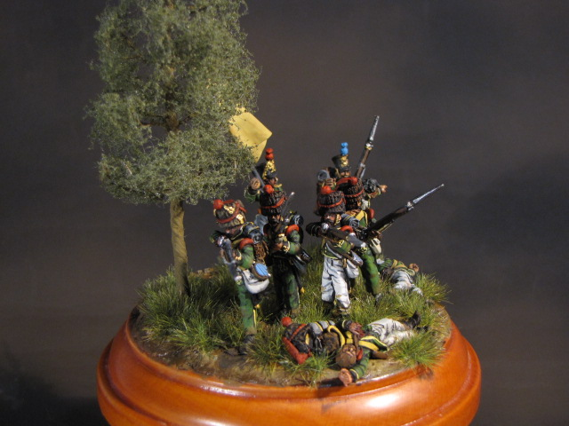 2éme Nassau Regiment, 1815 Img_2415