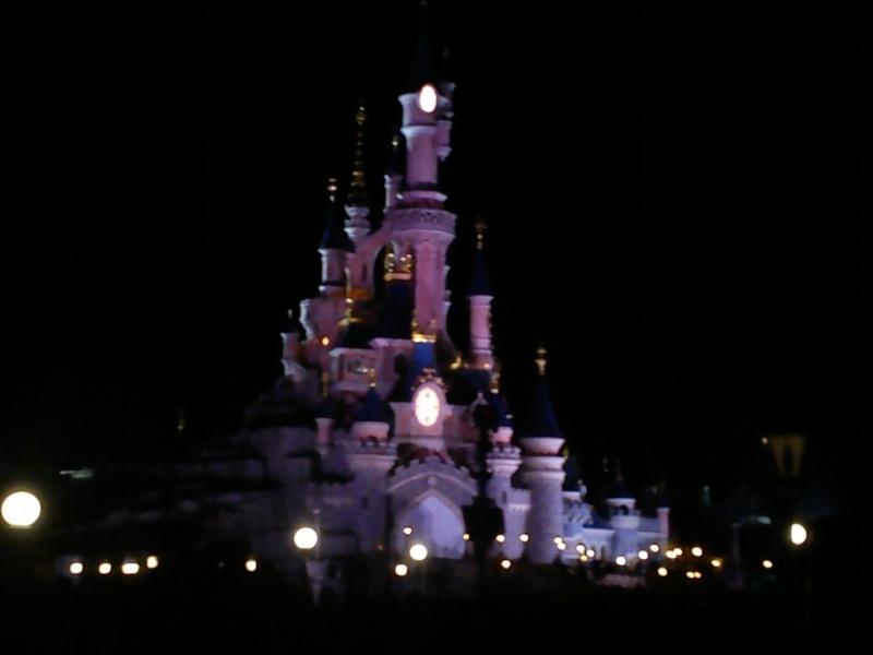 magnifique séjour Hôtel Disney du 31/01 au 02/02/14  - Page 2 Dsc_0049