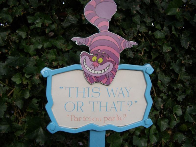 magnifique séjour Hôtel Disney du 31/01 au 02/02/14  P1310037