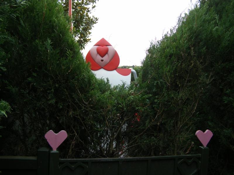magnifique séjour Hôtel Disney du 31/01 au 02/02/14  P1310039