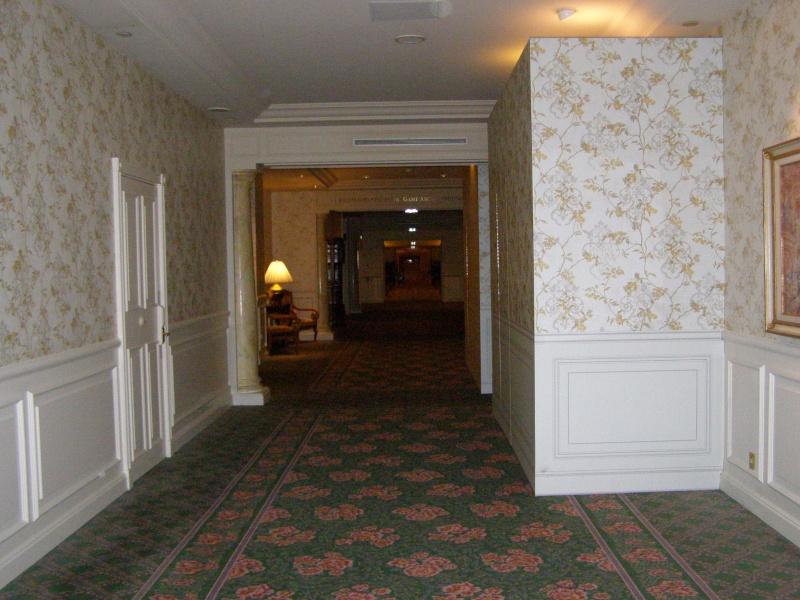 magnifique séjour Hôtel Disney du 31/01 au 02/02/14  P1310047