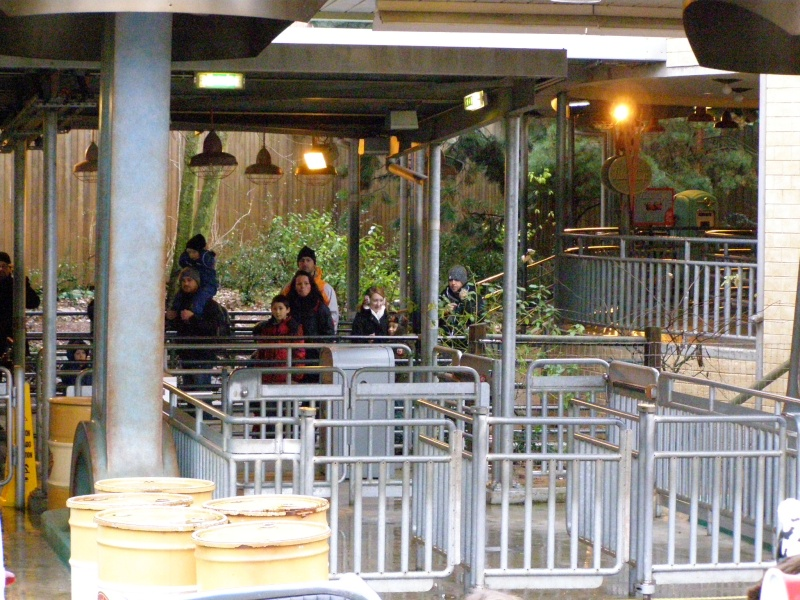 magnifique séjour Hôtel Disney du 31/01 au 02/02/14  P2010016