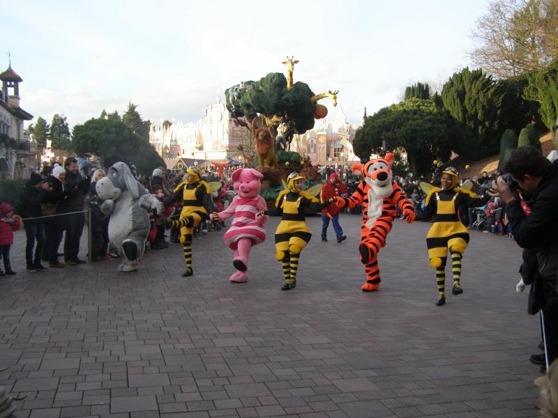 magnifique séjour Hôtel Disney du 31/01 au 02/02/14  P2010139
