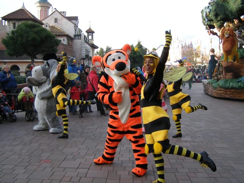 magnifique séjour Hôtel Disney du 31/01 au 02/02/14  P2010141