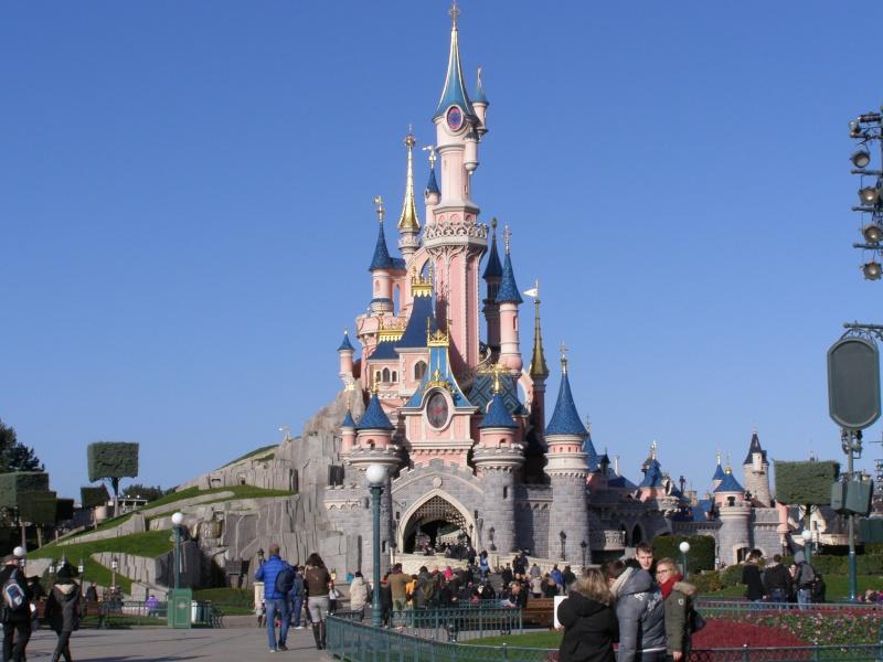 magnifique séjour Hôtel Disney du 31/01 au 02/02/14  - Page 2 P2020216