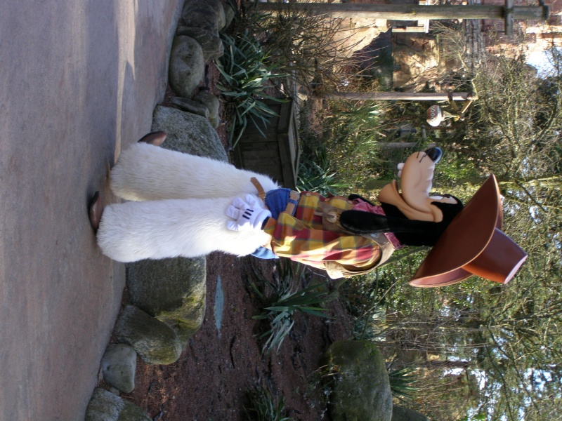 magnifique séjour Hôtel Disney du 31/01 au 02/02/14  - Page 2 P2020219