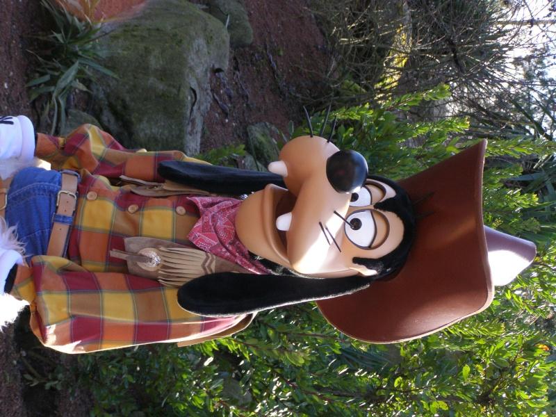 magnifique séjour Hôtel Disney du 31/01 au 02/02/14  - Page 2 P2020220