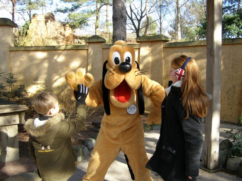 magnifique séjour Hôtel Disney du 31/01 au 02/02/14  - Page 2 P2020222