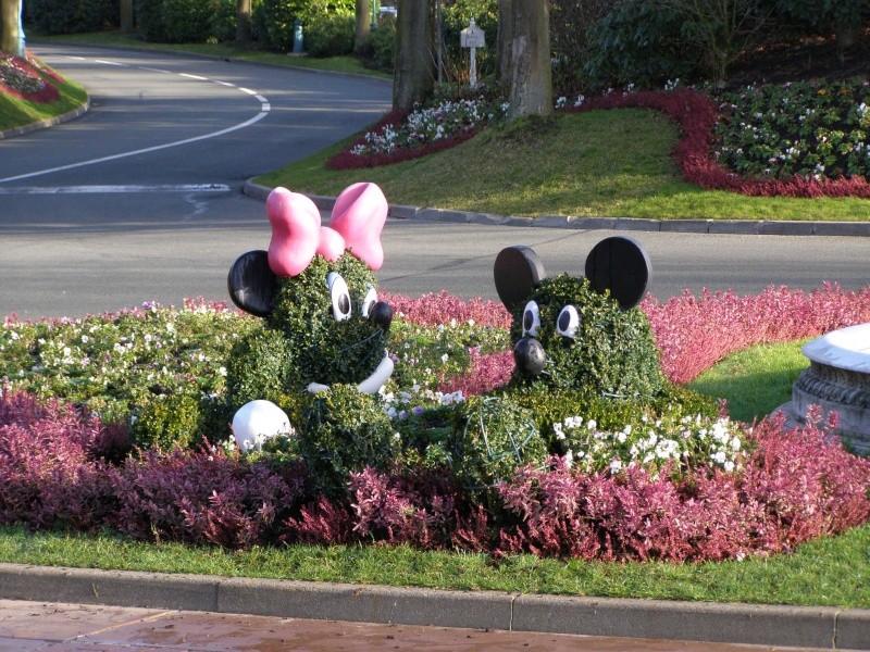 magnifique séjour Hôtel Disney du 31/01 au 02/02/14  - Page 2 P2020225