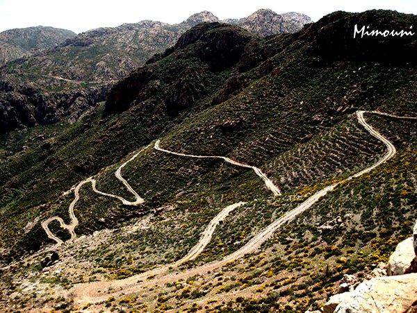 Le voyager à Tafraout  n'est pas sans  difficultés et  risques   Le rythme de croissance est très lente à Tafraoute Route-10