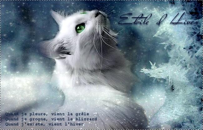 La différence ne fait pas le chat. [PV Winter ♥] Atoile10