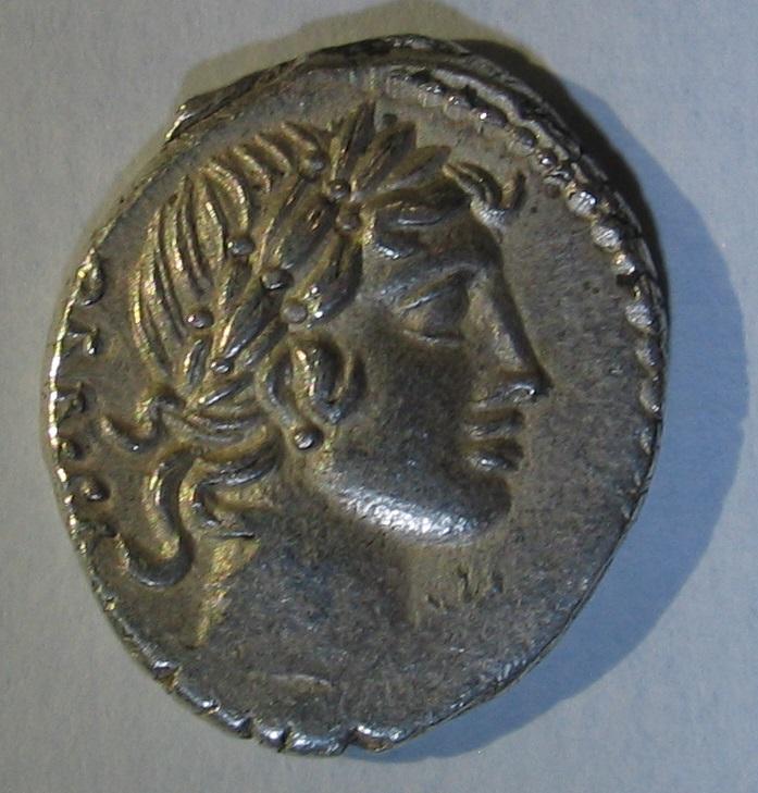 denier de Caius Vibius Pansa 113
