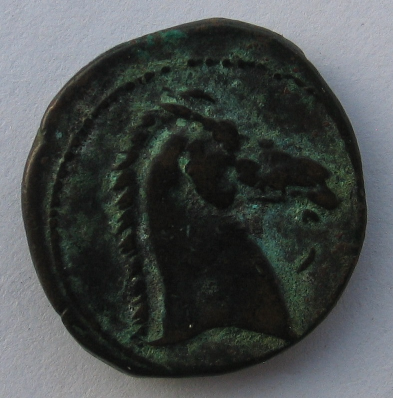 Bronze punique 3 (Carthage) 248