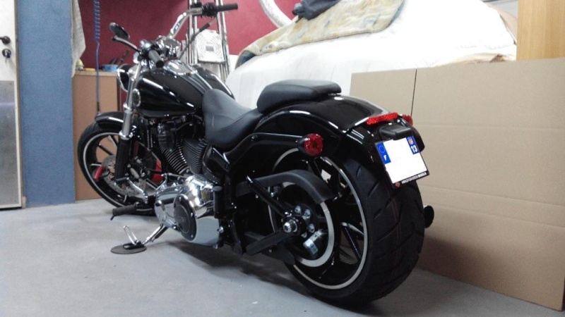 Softail Breakout - Page 5 Img_2031