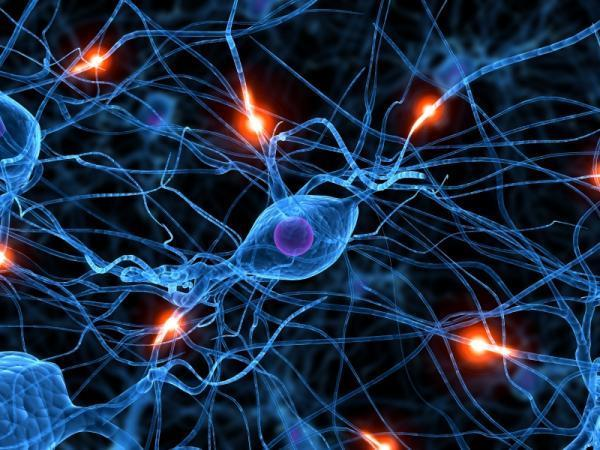 Como funciona o Subconsciente ? (O Poder da Mente Humana) E os Sonhos Lúcidos Neuron10
