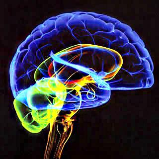 Como funciona o Subconsciente ? (O Poder da Mente Humana) E os Sonhos Lúcidos O_care12