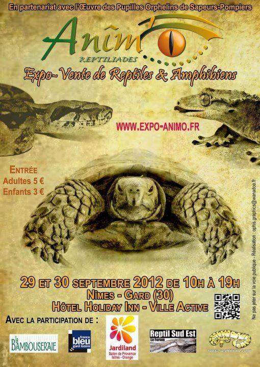 Exposition Nîmes 26 et 27 septembre 2014 22810711
